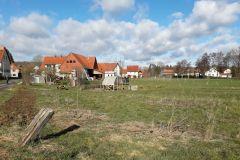 Unser Garten vor der Anlage der Beete